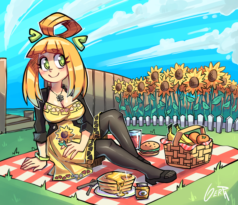 Anisa´s picnic