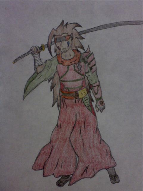 Samurai Blind