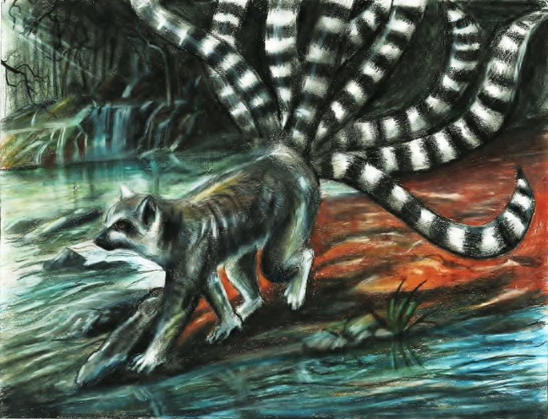 Nine-tailed Lemur