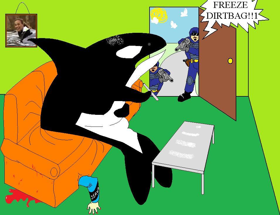 Killer Whale FBI Bust