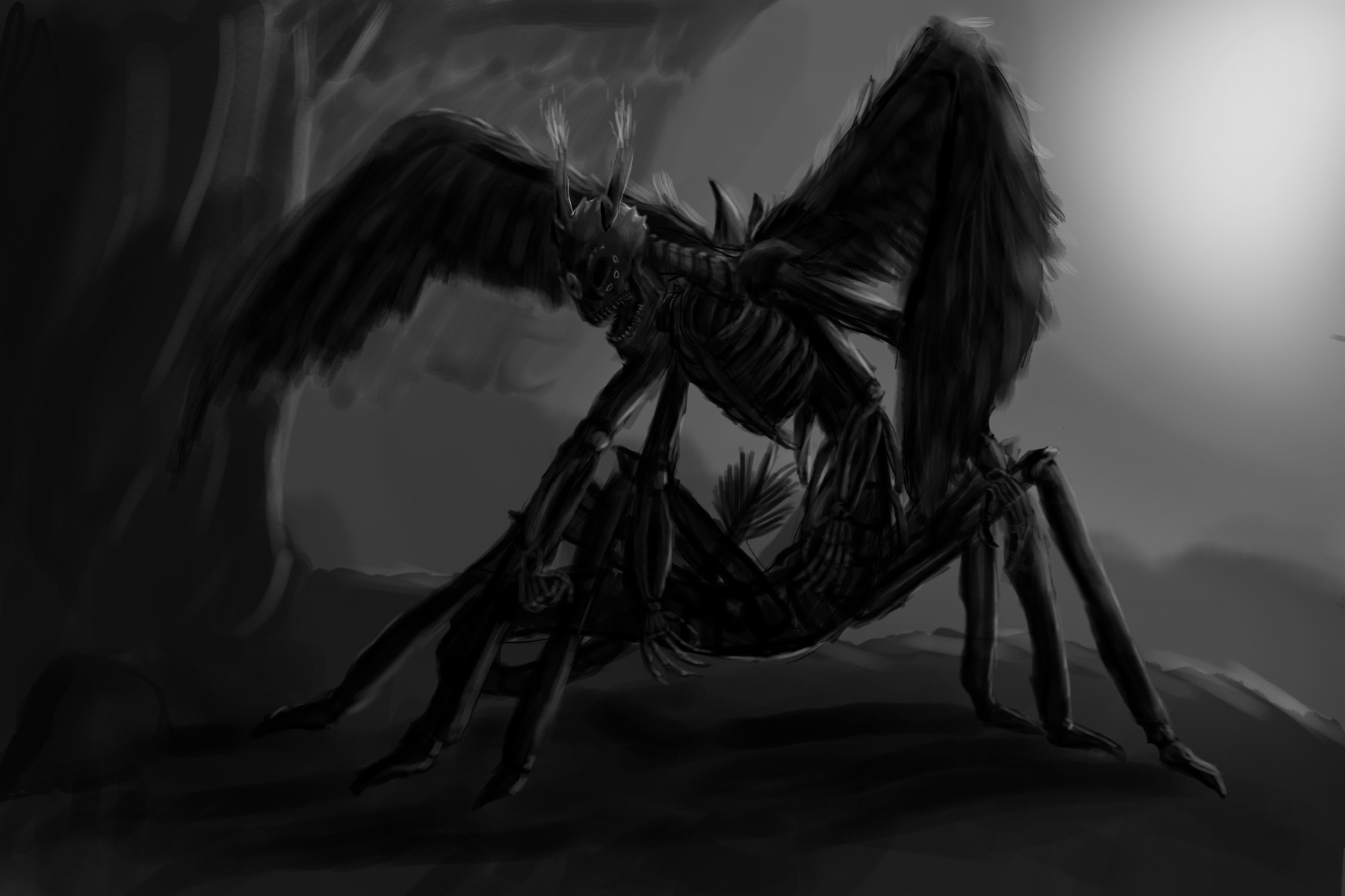 skeleton jac