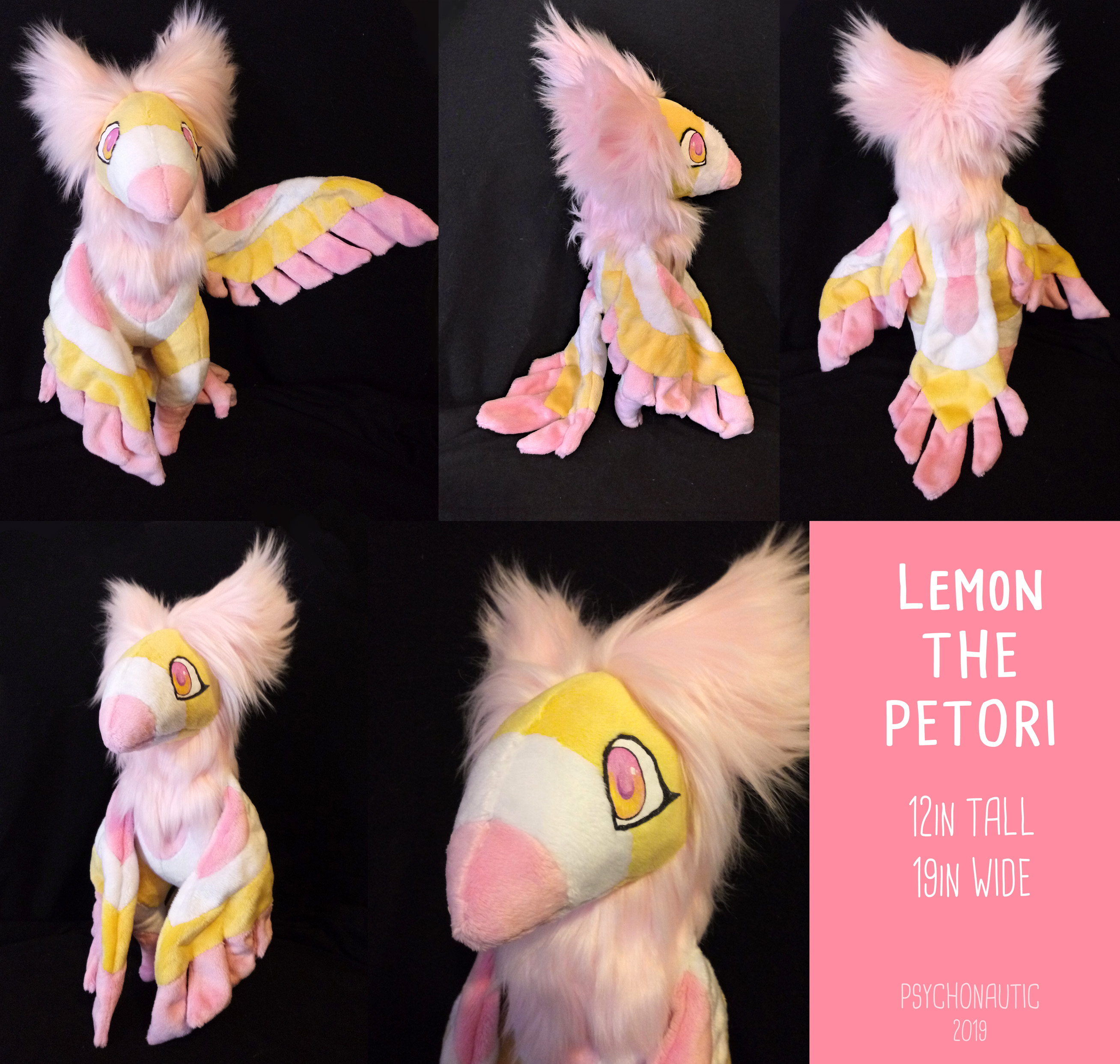 Lemon the Petori