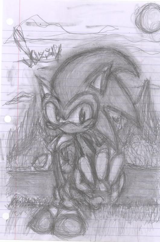 Sonic the hedgehawg