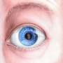 Yet Another Eye Bol