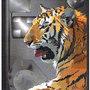 Tiger by beakerz