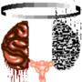 Brains: Dualism