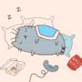 My Lazy Version of The Lazy Cat