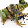 army frog by fuzzy11