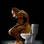 Bigfoot Toity