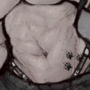 Evelyn Abs
