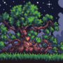 A tree in the night