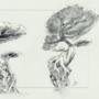 Tree Designs #2