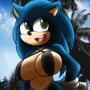 Sonic r63