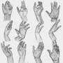 Study of hands