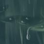 Frog Rain