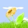 Flash Flower by manuelberja