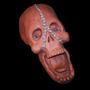 Nightmare Skull by JackBarnak
