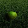 mossy by gr33bl3r