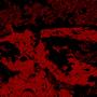 Gannon's temper by BlazeKnite