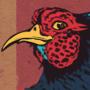 avian sketches