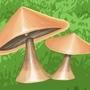 Flash_Mushrooms by manuelberja