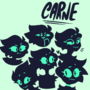 A Bunch of Carnes