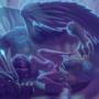 Dalaran Dragon