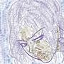 sketch girl 8 by peixeaquatico