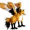 FalconFox