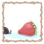 Trochulus striolatus - The Strawberry Snail