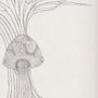 Mushroom by SayYourGoodbyes
