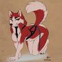 Husky Harness