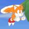 Tails Flight