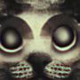 Cat Still
