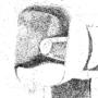 Megaphone stipple drawing