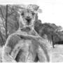 Kangaroo Roger