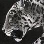 Jaguar by MoriChax
