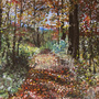 Fall Paths Painted by Drkchaos