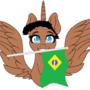 MLP (Next gen) - l am form brazil