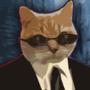 kitty cat 2.0