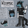Kludge Reference