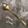 Spoon June 1