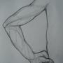 Arm Pose #1 by RWA