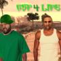 GTA San Andreas In Real Life