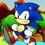 Sonic's 29th Anniversary