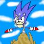 Sonic CD Rock Squint