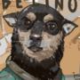 Abelino, the Best Boy.