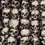 Wall of Skulls - XXIII