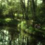 River Run by LiquidKarma