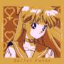 Sailor Venus Portrait